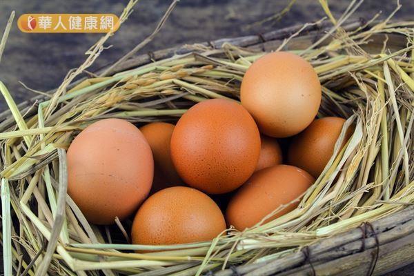 夏天是沙門氏桿菌好發季節,包括水、家禽、牛奶、蛋、肉製品等都是易孳生的地方。