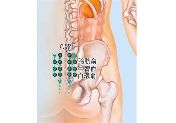 白環俞位在在骶區,橫平第4骶後孔,骶正中脊旁1.5寸。兩側髂脊連線與脊柱交點,往下推5個椎體,旁開2橫指處。(圖片/三采文化提供)