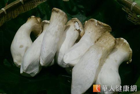 杏鮑菇富含多醣體和膳食纖維且營養價值高,因此具有蔬菜中的牛排美稱。
