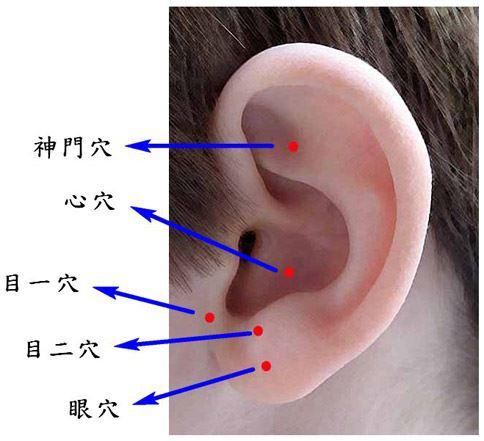 視力保健5耳穴位置示意圖。(圖片提供/台北慈濟醫院)