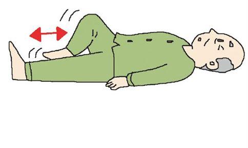 腿、膝蓋、髖關節運動1