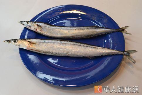 秋刀魚營養價值相當豐富,除了有大量的維生素A、D、E、B12,多元不飽和脂肪酸外,其所含有的DHA、EDA含量在眾多魚類中更是屬一屬二。(攝影/洪毓琪)