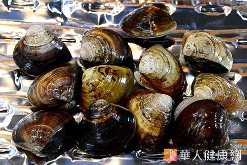 蛤蜊該怎麼挑選才對呢?專家表示,透過蛤蜊外觀、色澤就能簡易判別。(攝影/洪毓琪)