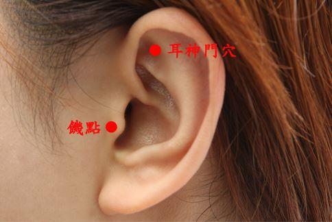 透過按壓、捏轉饑點、耳神門穴位的方式,能達到抑制食慾的作用。
