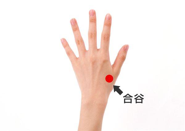 按壓合谷穴能疏通氣血、散風邪、退熱消炎,有利淡化斑點。
