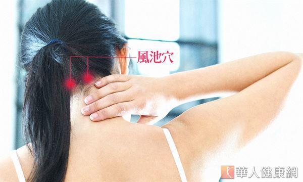 風池穴位於膀胱經上,經常按摩可幫助水分代謝、消水腫。