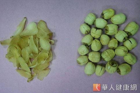 百合2錢(左)、蓮子2錢(右),可做藥膳茶飲助好眠。(攝影/張世傑)