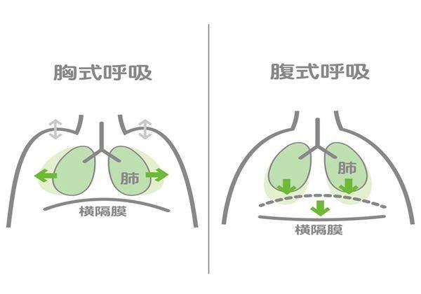 「腹式呼吸」的重點在於吐氣,用橫膈膜深吸氣後,吐氣時要相當慢、吐得長,此時副交感神經才會產生活化作用。(圖片/黃新傑物理治療師提供)