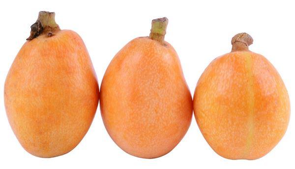 枇杷豐富的維生素B群,能保護視力,也能促進全身新陳代謝,加速脂肪分解。(圖片/取材自《100種水果營養圖典》一書)