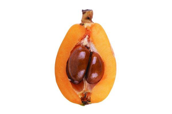《本草綱目》記載「枇杷能潤五臟,滋心肺」。(圖片/取材自《100種水果營養圖典》一書)