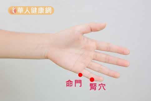 手掌小指間的腎穴、命門穴可加強身體的腎氣,改善疲勞怕冷的症狀。