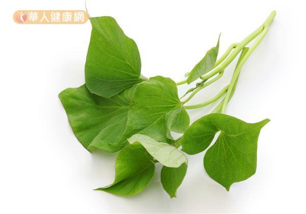 日常生活中常見的甘藍菜、地瓜葉、菠菜、玉米、綠花椰菜、芥蘭菜、青碗豆、蘿蔓葉、雞蛋、南瓜等食物,就是相當好的葉黃素獲取來源。