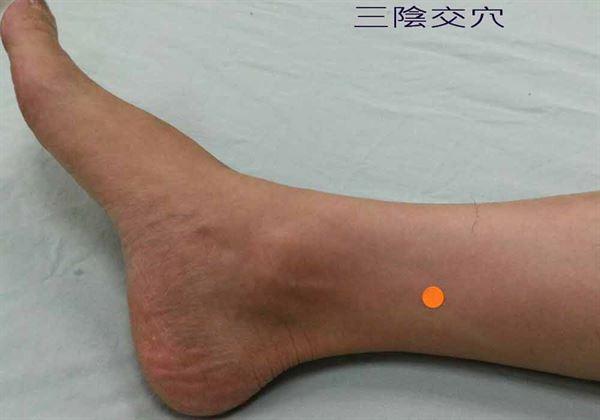 三陰交穴(圖二)腳踝內側凸點上約4指幅寬度。(圖片提供/台南市立醫院)