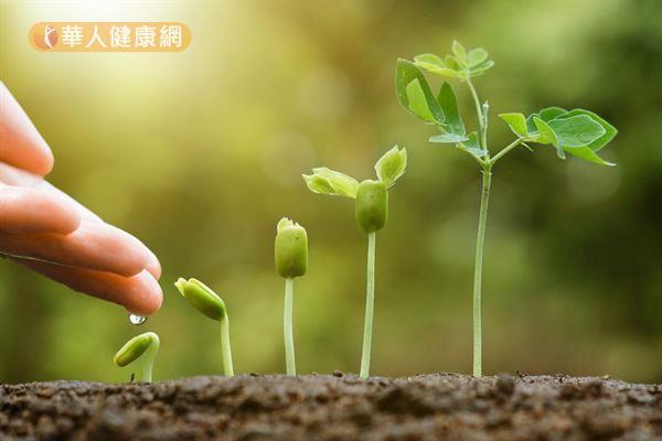 胚胎就好像一粒種子,而子宮內膜就像是一層土壤,當土壤肥沃、生長環境良好時,種子才能順利發芽並且成長茁壯。