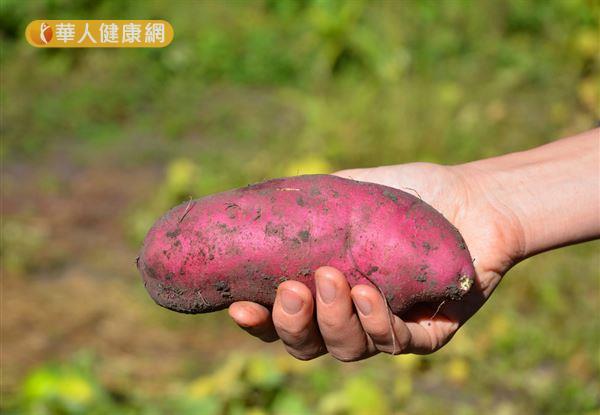 在流動的清水中刷洗地瓜皮,才能確實去除地瓜皮上的泥土和髒污。