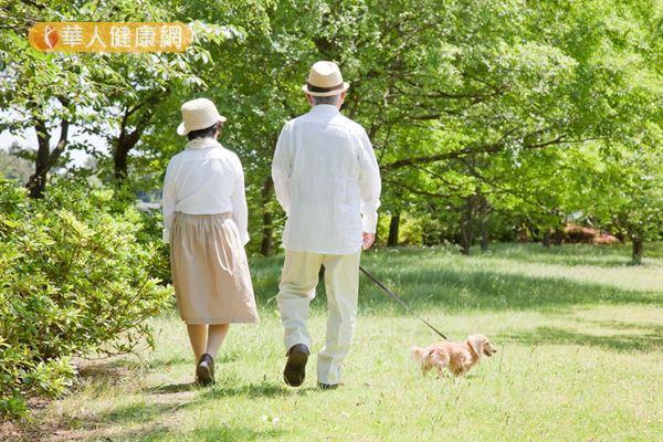 研究指出,遛狗習慣有助於維持老年人的活動力。