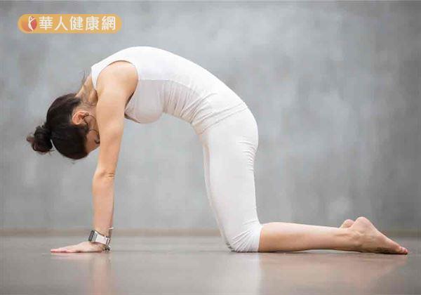 雙手、雙膝抵在棉被上,採趴伏姿勢。腹部用力往上頂,同時吸氣。接著將上半身慢慢抬起,形成拱背姿勢。
