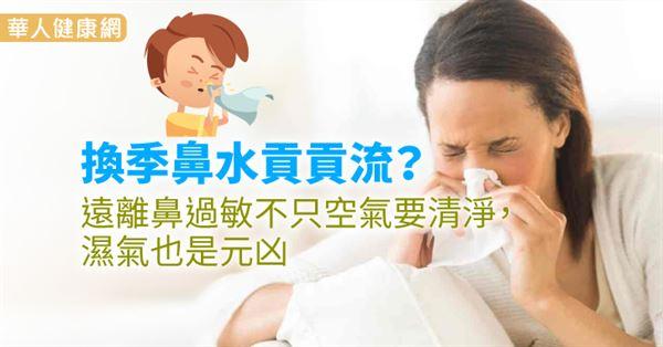 換季鼻水貢貢流?遠離鼻過敏不只空氣要清淨,濕氣也是元凶